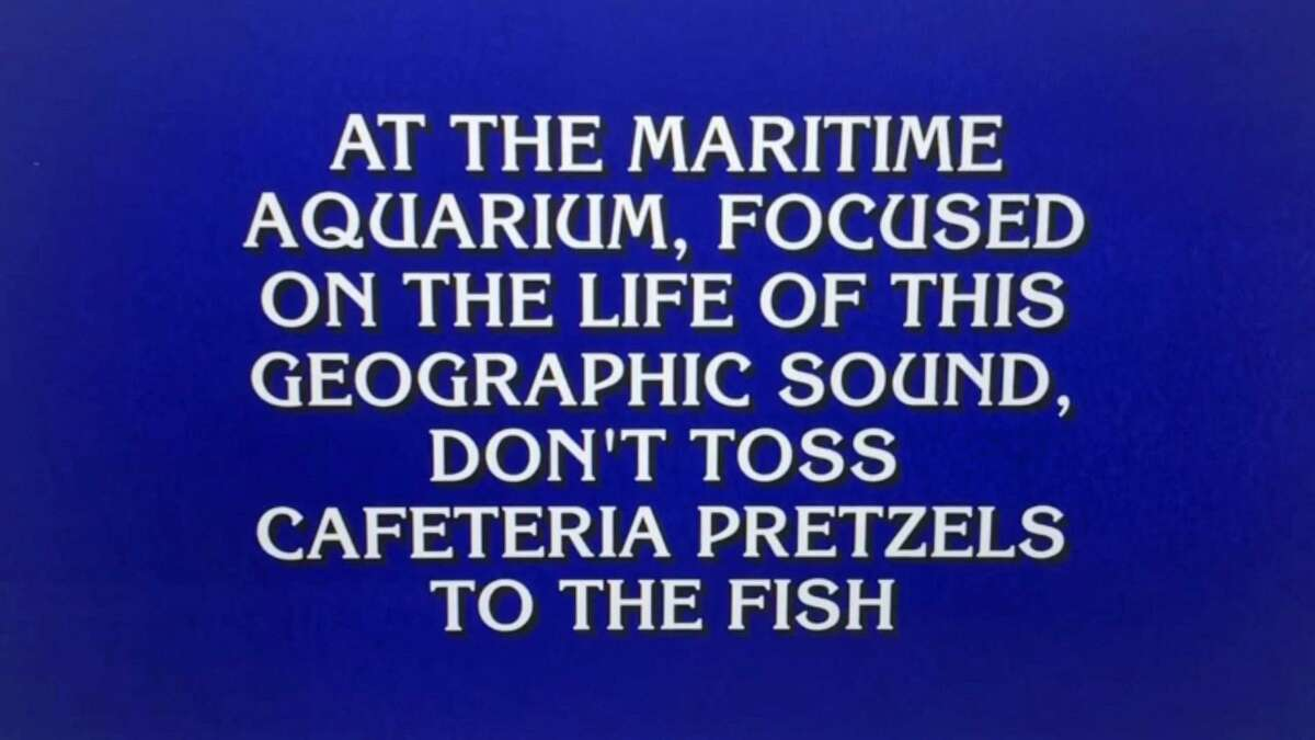 A question referencing Norwalk's Maritime Aquarium from the Jan. 14, 2019 episode of