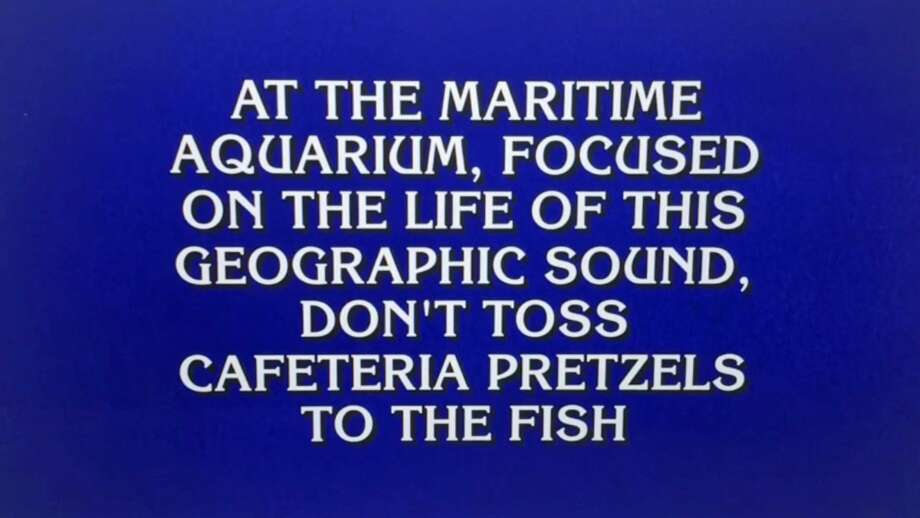 """A question referencing Norwalk's Maritime Aquarium from the Jan. 14, 2019 episode of """"Jeopardy!"""" Photo: Contributed /"""